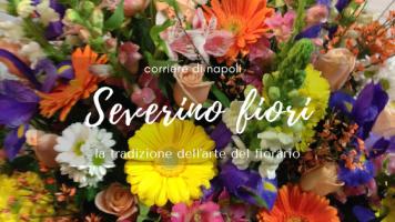 #vivinapoli: Severino Fiori e la creatività generazionale delle piante!