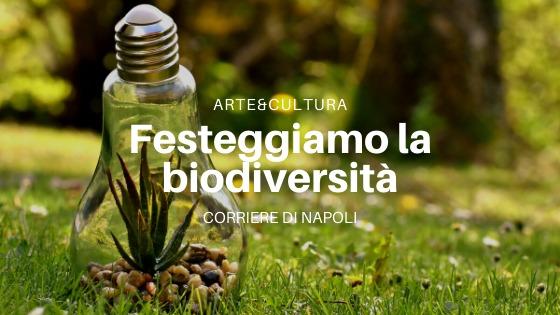 #Arte&Cultura: la Giornata Mondiale dell'Ambiente