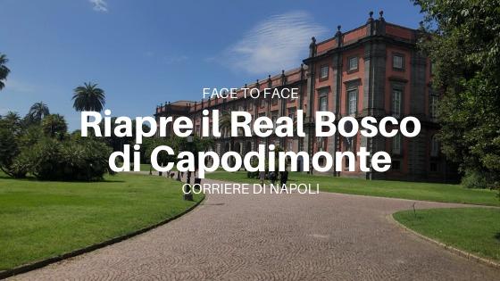 "FaceToFace, Sylvain Bellenger: ""Bentrovati al Museo di Capodimonte!"""