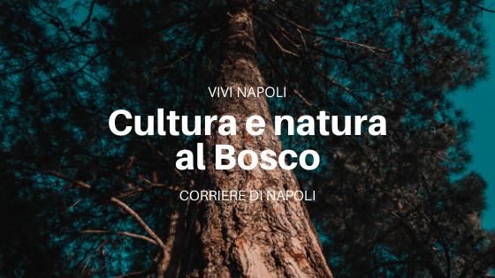 napoli teatro festival 2020 e real bosco di capodimonte