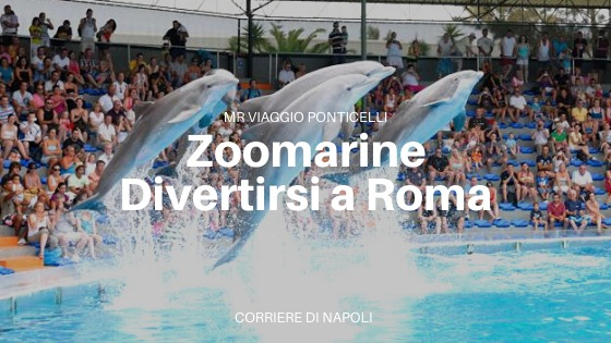 Zoomarine: divertirsi a Roma