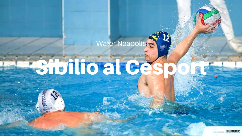 Water Neapolis: nuovo acquisto della Cesport! Ecco Sibilio