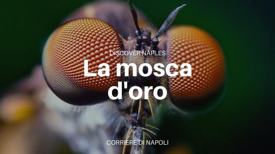 La mosca d'oro di Porta Capuana: talismano contro gli insetti
