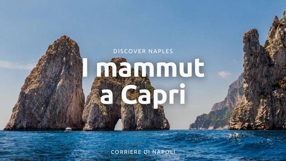 I mammut a Capri: la Preistoria isolana